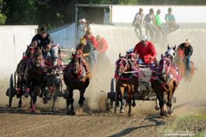 E & L Building Contractors horse race